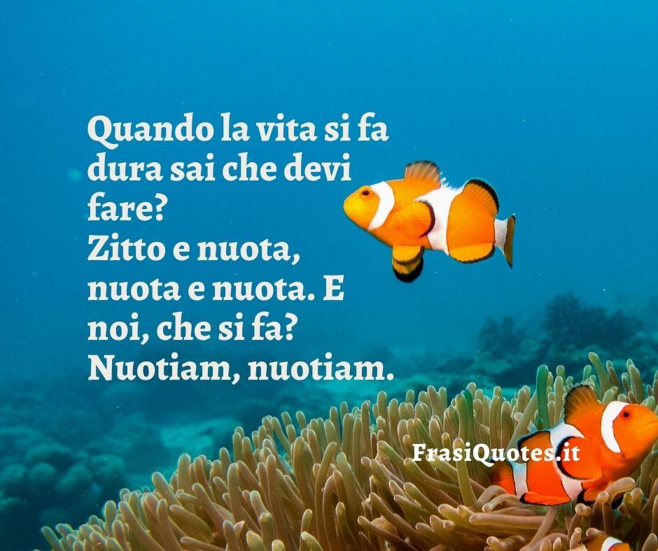Frasi Nemo Zitto e nuota,   Frasi sulla vita dura