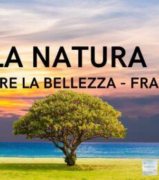 Video Frasi Natura oltre la Bellezza