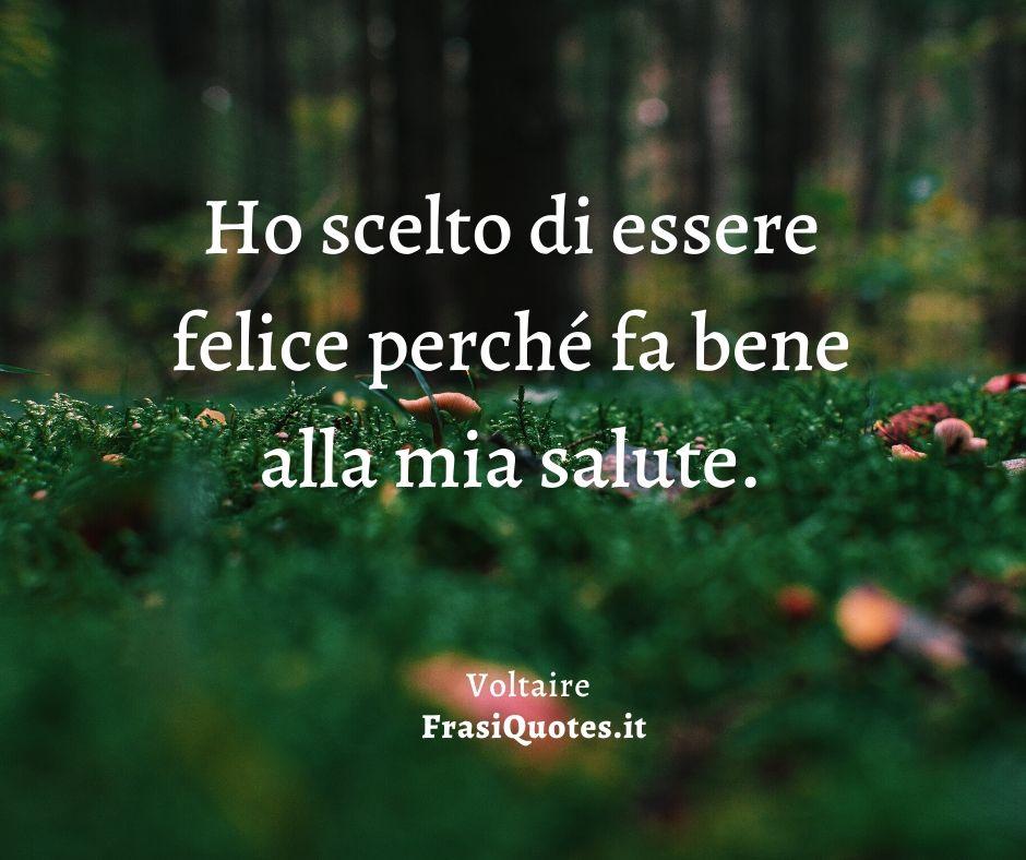 Voltaire Frasi Felicita Frasi Sulla Vita