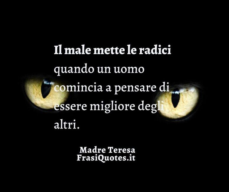 Frasi sulla vita Madre Teresa