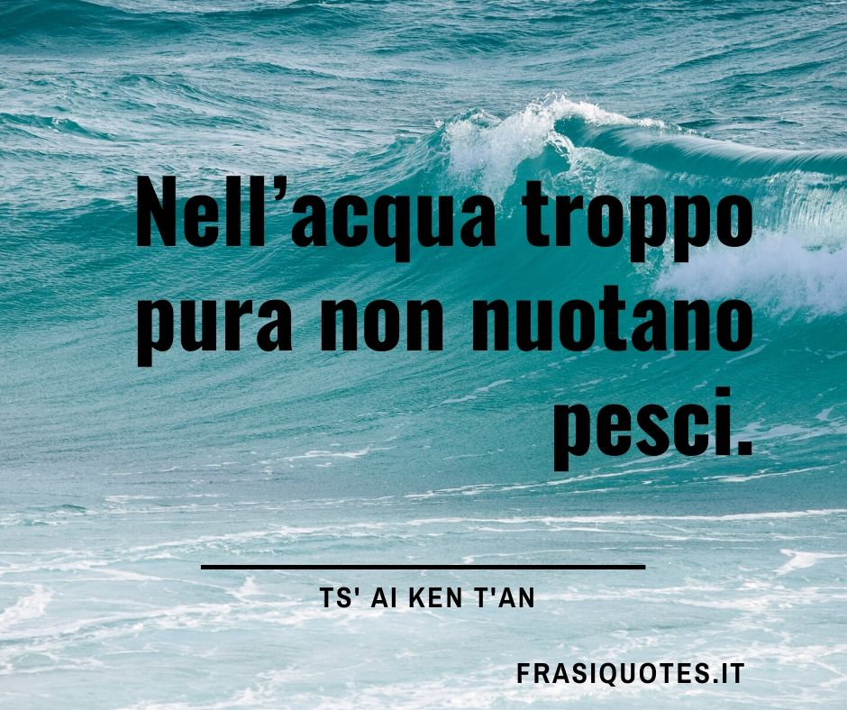 Frase Zen Breve Bellissima Frasi Significative Con Immagini